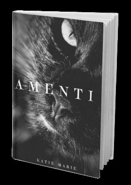 AmentiBook
